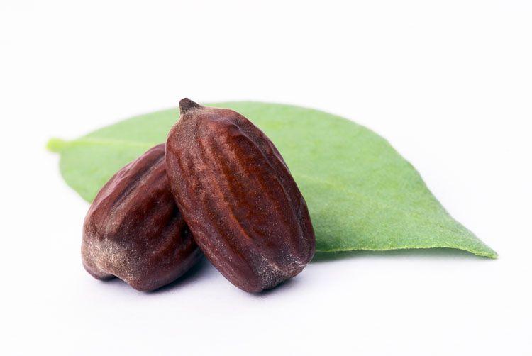 Propiedades cosméticas del aceite de jojoba