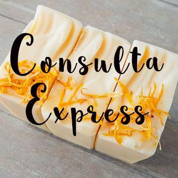 Consulta Express